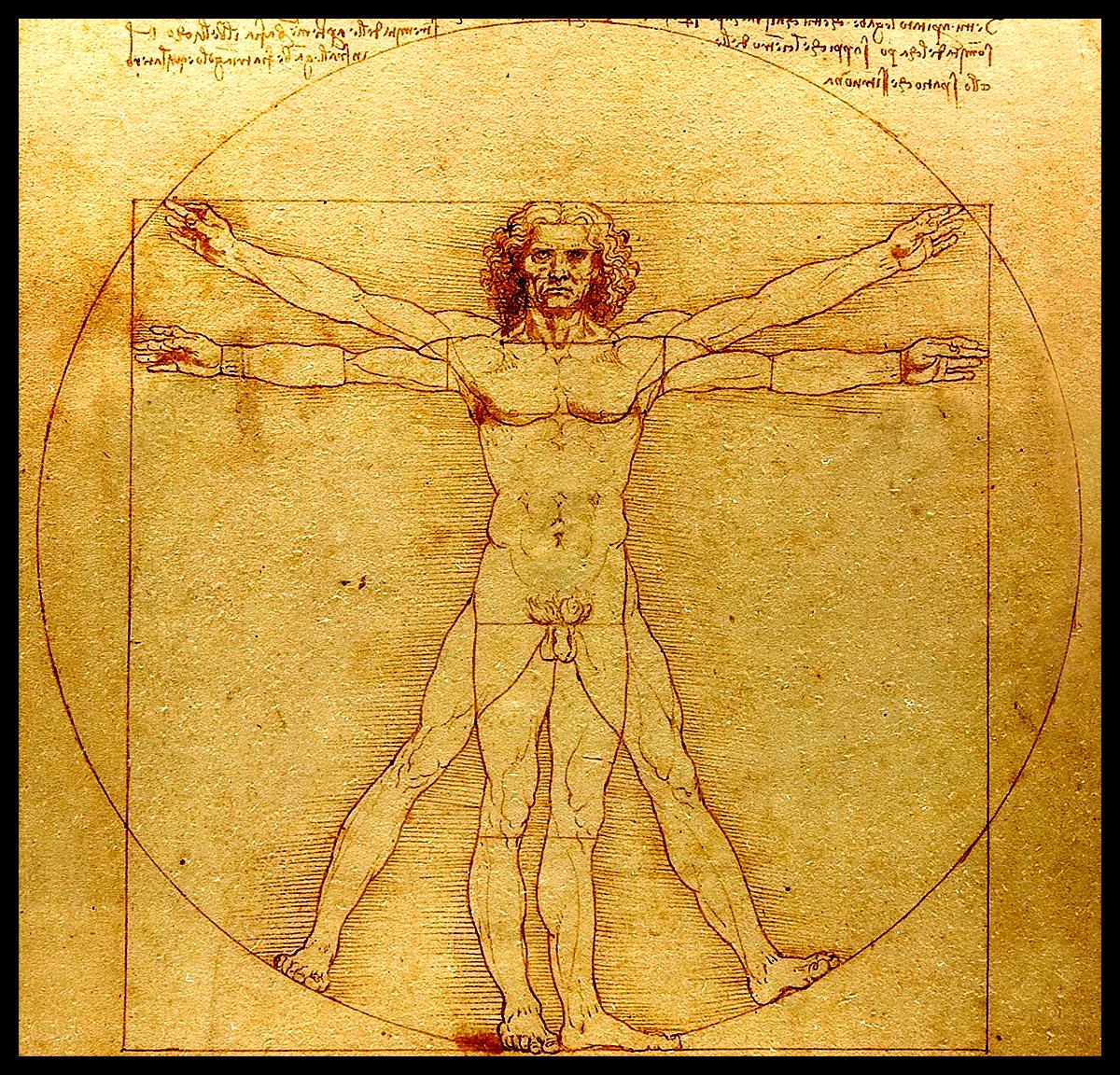 uomo vitruviano - da vinci (1490) d'purb site