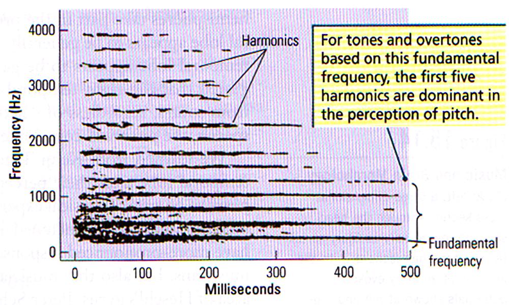 016 SpectrographicDisplay.jpg