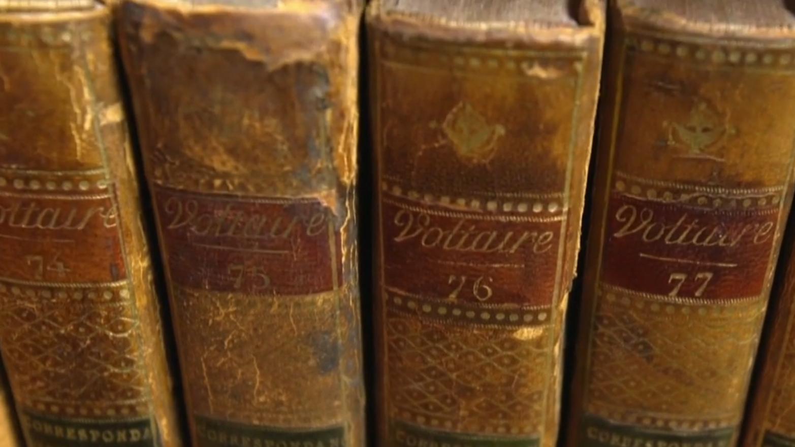La correspondence de Voltaire en plusieurs volumes - d'purb dpurb site web