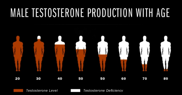 testosterone-production