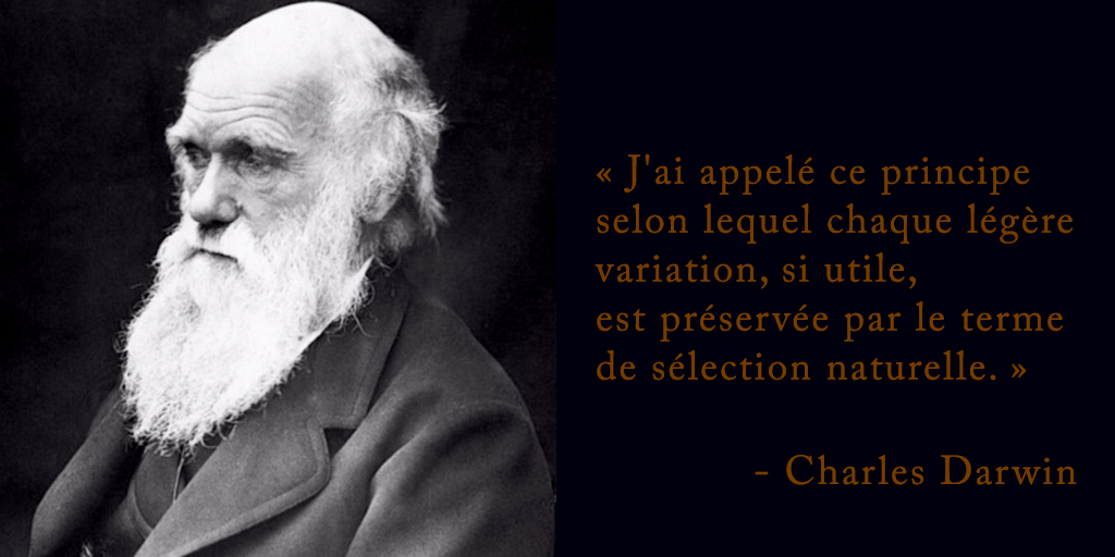 Charles Darwin sur l'evolution par la sélection naturelle D'Purb Website