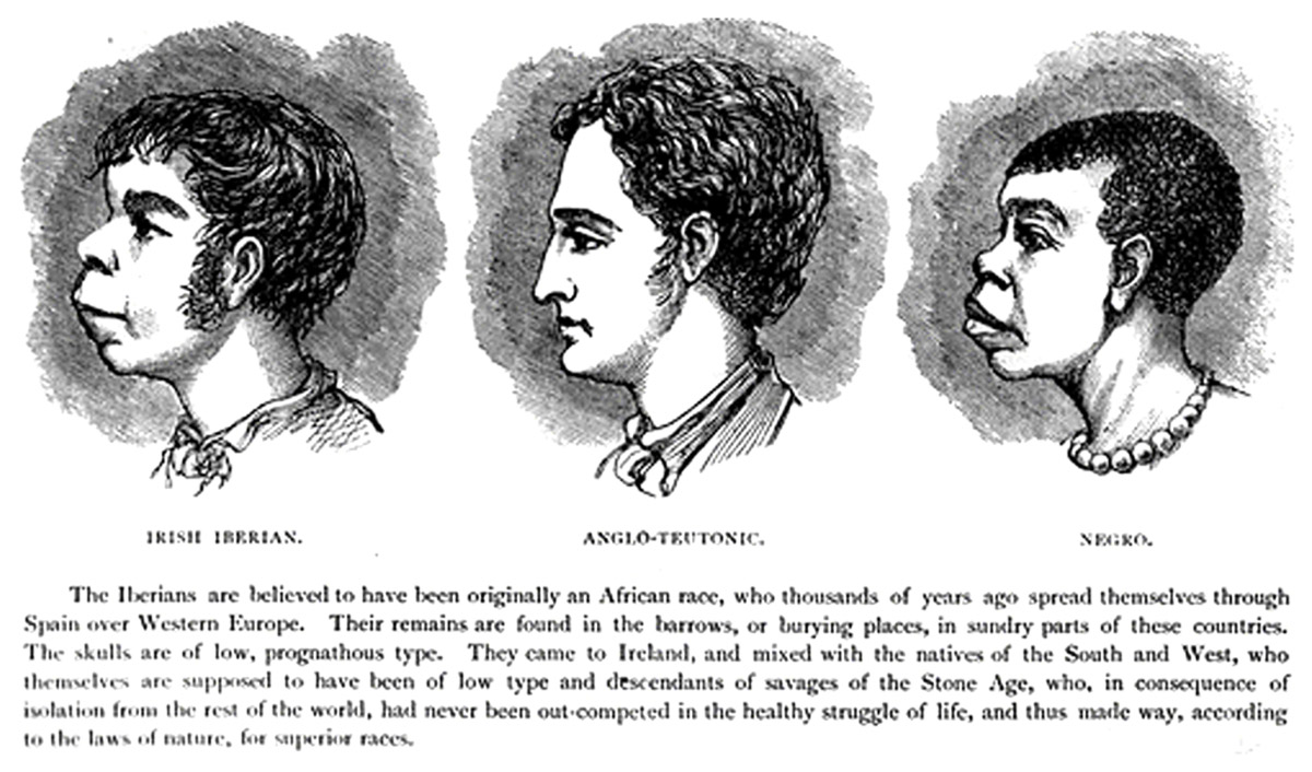 Irish Iberian and Negro features in contrast to the higher Anglo-Teutonic