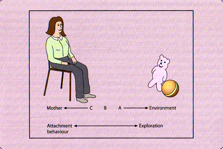 PC Attachment as a balance of behaviour TA
