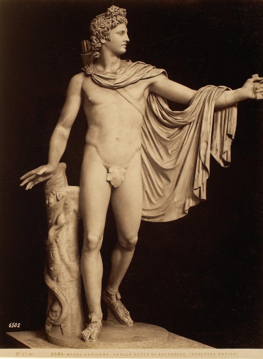 The Apollo Belvedere (Ancient Sculpture) - Vatican Museum - Roma