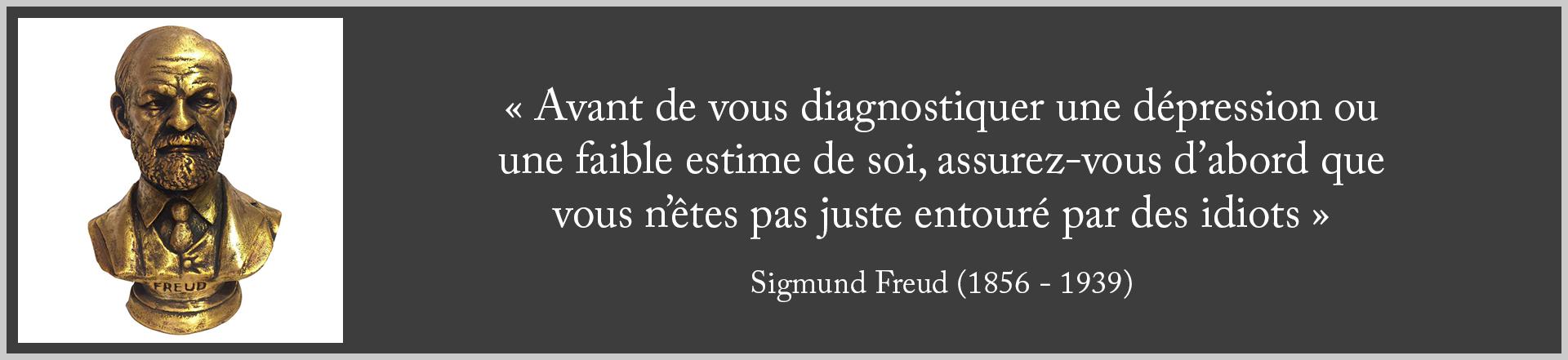 Freud Entouré par des Idiots dpurb site web