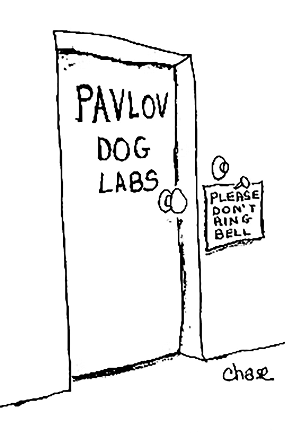 Pavlov Dog Labs