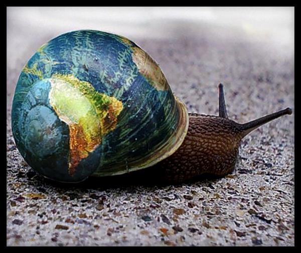 Globe Escargot Snail Danny D'Purb dpurb site web