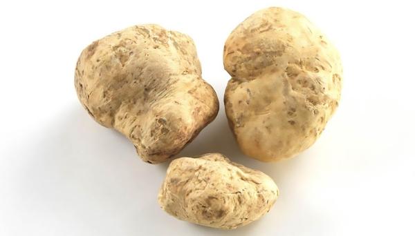 Some White Truffles